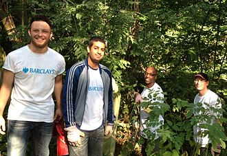 Tower Hamlets Cemetery Park - Group of volunteers from Barclays, helping the park