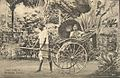 Tamil lady in a hand-pulled rickshaw in Ceylon in 1910.JPG