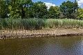Technisch-biologische Ufersicherung an der Wümme, Versuchsstrecke 2 (50678789672).jpg