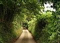 Tetbury Lane - geograph.org.uk - 978060.jpg