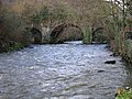 The Avonbeg River, County Wicklow - geograph.org.uk - 1809408.jpg