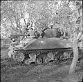 The British Army in Italy 1944 NA10707.jpg
