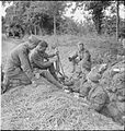 The British Army in the Normandy Campaign 1944 B5547.jpg