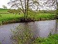 The Eastern Cleddau running past Llawhaden churchyard - geograph.org.uk - 793670.jpg