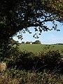 The Park - geograph.org.uk - 1543397.jpg