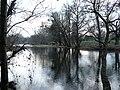 The River Usk near Clytha Castle - geograph.org.uk - 646905.jpg