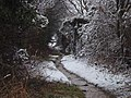 The Snowy Footpath - geograph.org.uk - 1151666.jpg