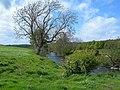 The Water of Girvan - geograph.org.uk - 424741.jpg