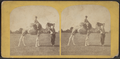 The camel, from Robert N. Dennis collection of stereoscopic views.png