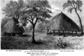 The halting place at Chibisas of Anne Mackenzie and Elizabeth Mary Tudway Burrup (Feb 1862).png