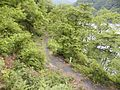 Tokuyama, Ibigawa, Ibi District, Gifu Prefecture 501-0814, Japan - panoramio (2).jpg