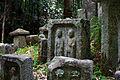 Tono Kizugawa Kyoto pref Japan33s.jpg
