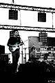 Totem - guitarist (by Patrice CALATAYU).jpg