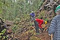 Trail maintenance - Olympic National Forest - Nov 2017 01.jpg