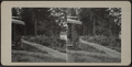 Trail to the Lake, from Robert N. Dennis collection of stereoscopic views.png