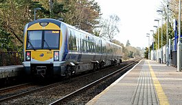 Train, Derriaghy station (3).jpg