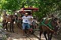 Transporte a Cenotes Cuzamá.jpg