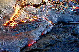 Tree on fire in active lava flow, Hawaii Volcanoes National Park, USA.jpg