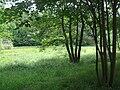 Tricity Landscape Park, Gdynia - 010.JPG