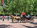 Trooping the Colour 2009 039.jpg