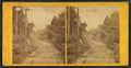 Tuckerman's Ravine from Glen Road, by John B. Heywood.png