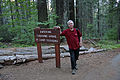 Tuolumne Grove Trailhead 05 (4244792767).jpg