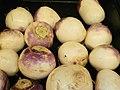 Turnips in a bin.jpg