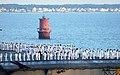 US Navy 020815-N-0872M-516 Norfolk VA - USS Kennedy arrival.jpg