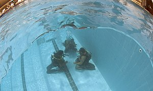 Special Service Group (Navy) - SSG(N) conducting force-protection and under-water special forces training with their United States Navy counterparts, the U.S. Navy SEALs.
