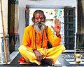 Udaipur Holly Man 2 - panoramio.jpg