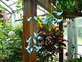 Uji City Botanical Garden DSCN2742.jpg