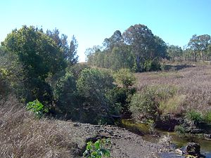 Bremer River (Queensland) - Upper river at Rosevale, 2011