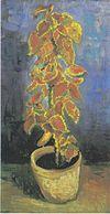 Van Gogh - Blumentopf mit Buntnessel.jpeg