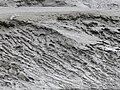 Vasière Rivière de la Penzé Lamiot P1400506.JPG