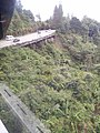 View from the Cable Car at Genting Highlands, Malaysia (22).jpg