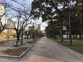 View in Hiroshima Peace Memorial Park 5.jpg