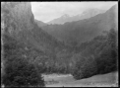 View of Greenstone Valley, Lake Wakatipu, 1926. ATLIB 299152.png