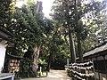 View on south side of Oyamazumi Shrine 2.jpg