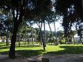 Villa Carpegna P1000738.JPG