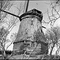 Voormalige Korenmolen, in restauratie - Wieringerwaard - 20255746 - RCE.jpg