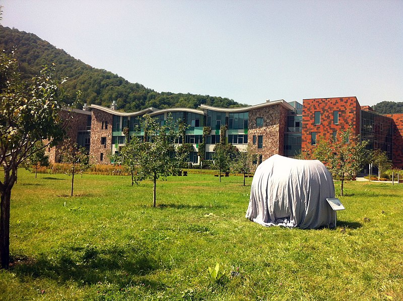 File:WCSAGreece @ WMCEE2016 Wikipedia Scupture before unveiling @ UWC Dilijan.jpg