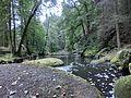 Waldnaab-Uferpfad - panoramio.jpg