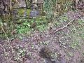 Wallace's Heel Well, River Ayr, Scotland - detail.jpg