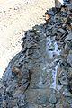 Watch your step on steep trails - Flickr - daveynin.jpg