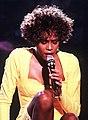 Whitney Houston Welcome Heroes 8 (cropped).JPEG