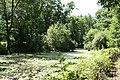 Widecombe in the Moor, pond at Newbridge Marsh - geograph.org.uk - 892766.jpg