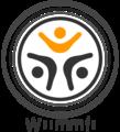 Wiimmfi-light.png