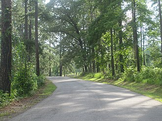 Caney Lakes Recreation Area - Wooded road to Upper Caney Lake