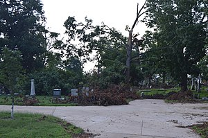 Woodland Cemetery (Quincy, Illinois) - Aftermath of July 2015 storm damage