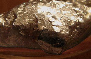 Alloy - Wood's metal, a eutectic, low melting point alloy of bismuth, lead, tin, and cadmium